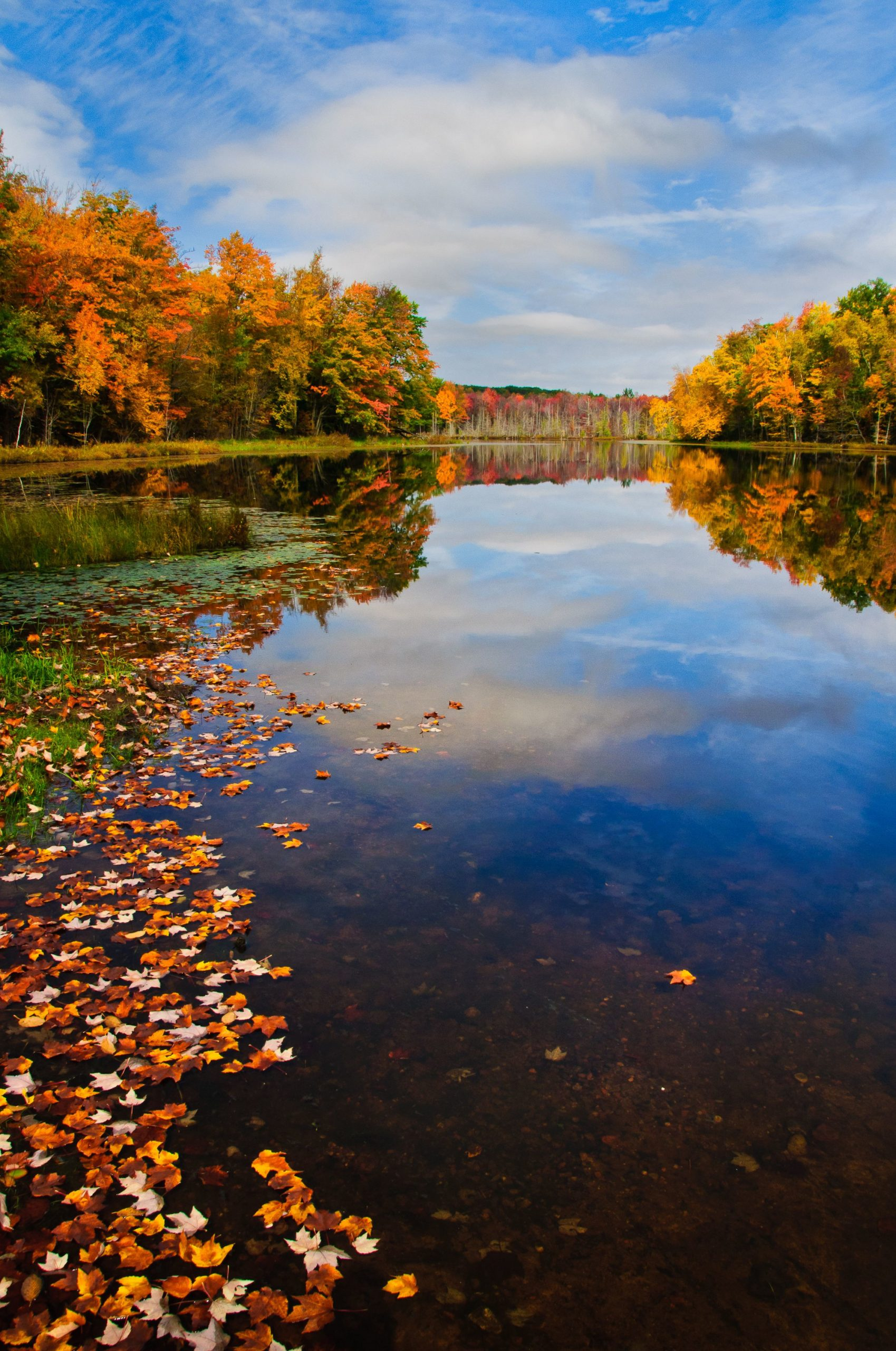 perch lake rusk county wi in fall